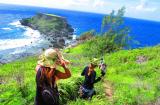 禁断の島ツアー