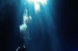 CMLC ARTHA ダイビング