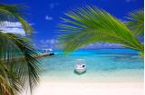 マニャガハ島ツアー&マンディーアジアンスパ